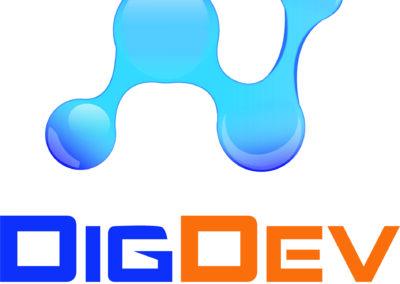 Dig Dev Direct